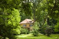 Cottage hidden in the woods