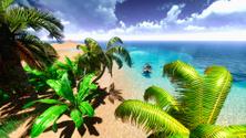 Hawaiian paradise beach