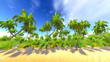 Hawaiian paradise on the island