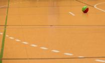 Handball on the playing ground