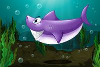 Big shark under the sea