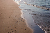 Shore at Lake Michigan