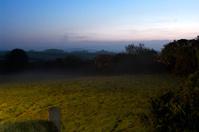 Misty Field In Evening