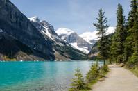 Chateau Lake Louise Trail