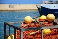 Jaffa's Marina