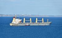Pilot assisting bulk cargo ship