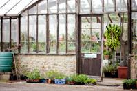 Timber framed greenhouse