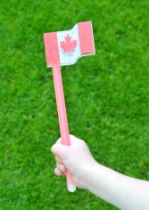 Canada Flag Glowstick