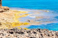 Cap de Ses Salines.  Balearic Islands