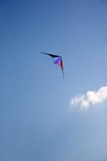 Kite and Wolk