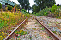 Aptos Railroad Tracks
