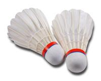 Badminton Ball Two
