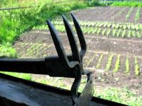 chopper and vegetable garden