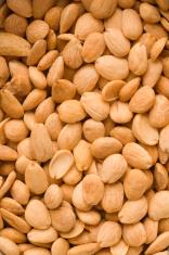 Spanish Almonds Texture Vt