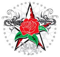 vintage rose star emblem