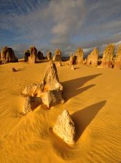 The Pinnacles Desert under Sunset light