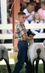 Showing at a County Fair
