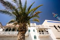 Oman, Muscat, Muttrah Corniche.