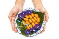 Woman hand give  thai dessert ,
