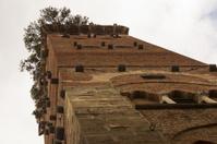 Tower Guinigi