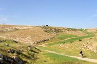 Lonely rider in Judea desert, Israel.