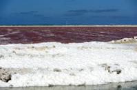 saltplain on the island of bonaire