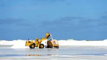 caterpillar at work on salt flat, bonaire