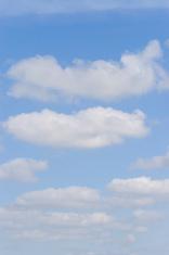 Perfect Cumulus