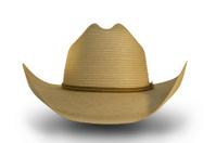 Straw Cowboy Hat 2