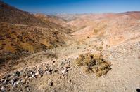 Desert Valley, Chile
