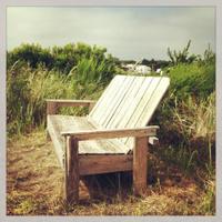 Bench at Beach