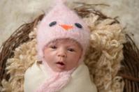 Newborn in Nest