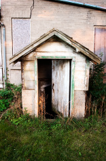 Abandoned House Basement Door