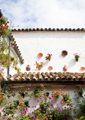 HOUSE DECORATED WITH FLOWERPOTS.