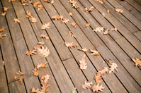 Autumn leaves on a Deck