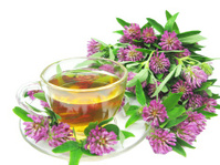 herbal tea with clover extract