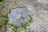 Fancy Stone Path