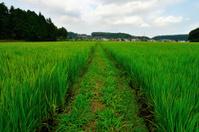 Japanese country landscape, Fukushima, Japan.