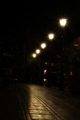 Streetlight Reflection