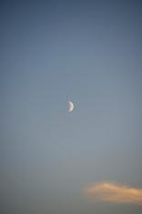 Evening Half Moon