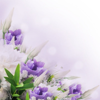 Bouquet from white and pink flowers
