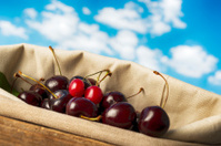 Cherries under great blue sky