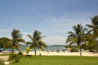 Caribbean beach