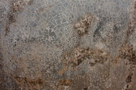Crack pattern on concrete