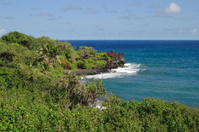 Waianapanapa Coastline