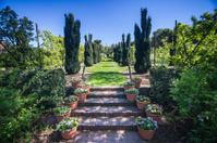 Garden Path of Zen