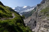 Valley near Grindelwald