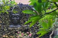 Buddha Head Wall