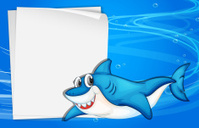 Empty paper under the sea beside a shark