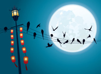 Swallows on the string with Full moon background
